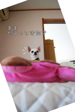 04_20100508120657.jpg