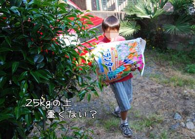 04_20100517115154.jpg