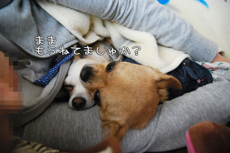 05_20100511094438.jpg