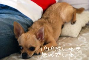 ai_20100627192607.jpg
