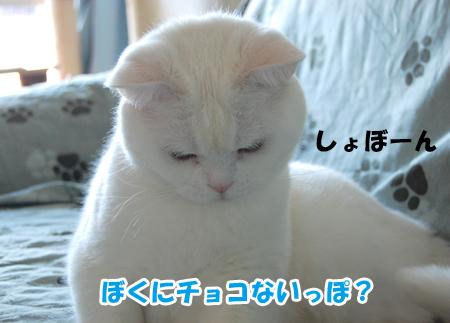 しょぼんメメタ_090214