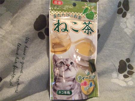 猫茶1_090317