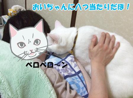 怒りメメタ3_090502