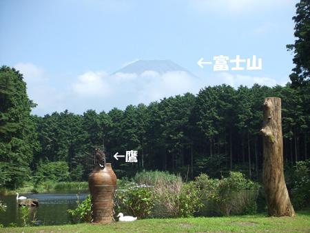 090812_花鳥園15