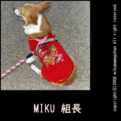 miku組長