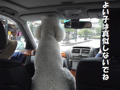 運転リッキー