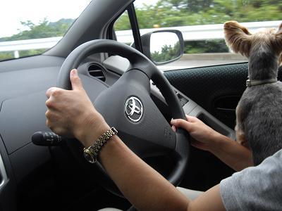 ドライブ時