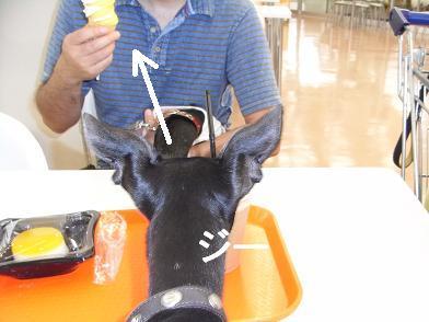 アイスの方がいいなぁ~。。。