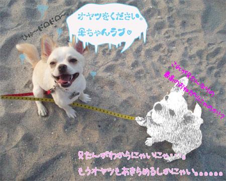 砂浜でおねだり3