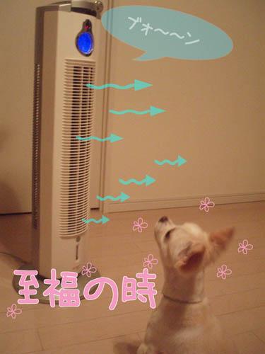 扇風機くん1