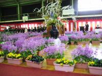 09.3.24 泉川小学校卒業式1
