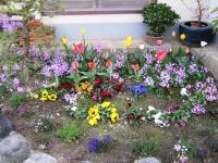 09.4.14 隣の花3