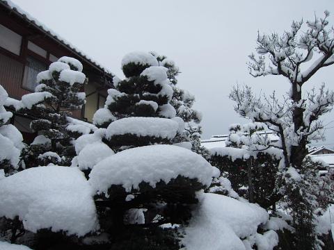 1 26 雪