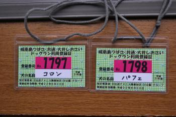 DSC_1189_20090605.jpg