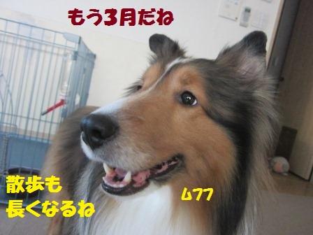 120301-1.jpg