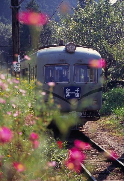 ooigawa0709013.jpg