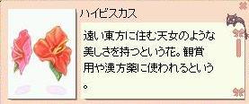 20060103232130.jpg
