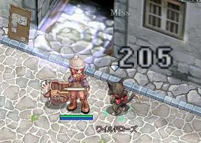 20060106084811.jpg