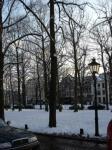 雪のハーグ2