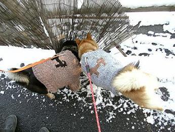 雪の日②8