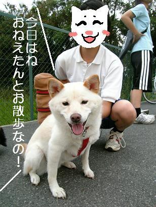 夢の共演!2