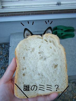 りんごパン。1
