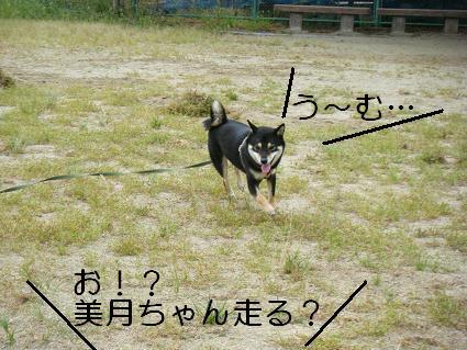 走ろうよ!2