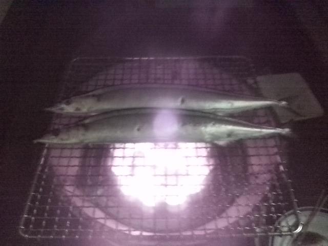 秋刀魚開始