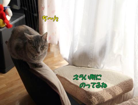 miu2010d241.jpg