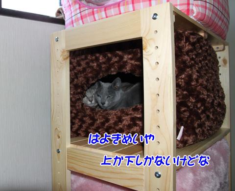 miu2010n2151.jpg