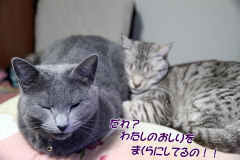 miu2011f261.jpg