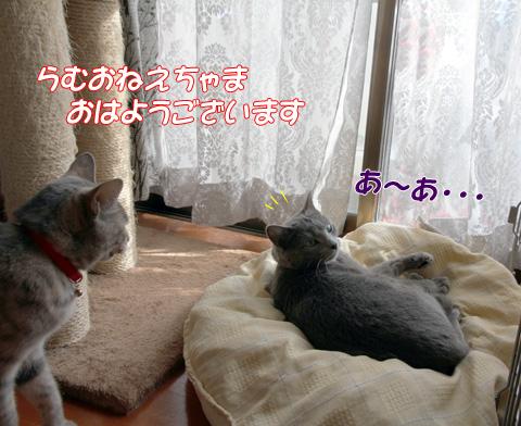 miu2011m071.jpg