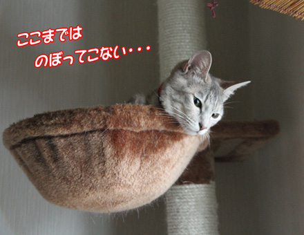 miu707062.jpg