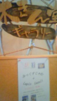 2012木きん堂1