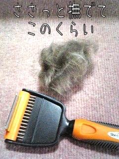 シェッドバスターと毛