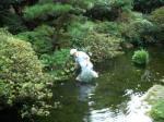 池の周りの草取り