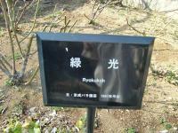 2011.2.26・27 横浜・鎌倉巡り1(洋館巡り) 108