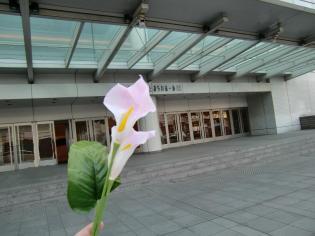 2.26 27横浜・鎌倉巡り 156