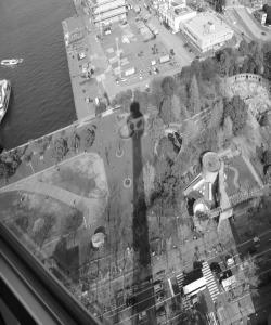 マリンタワーの影