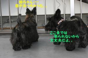 a_20081007230949.jpg