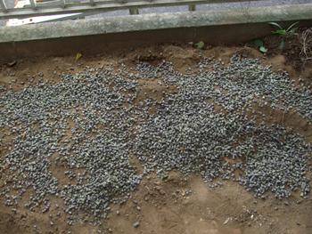 堆肥の配合