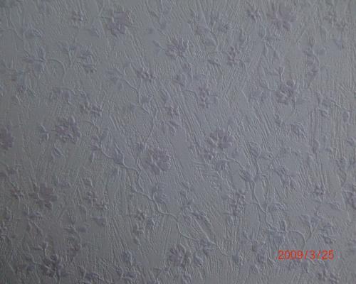 090325洗面脱衣所壁紙アップ