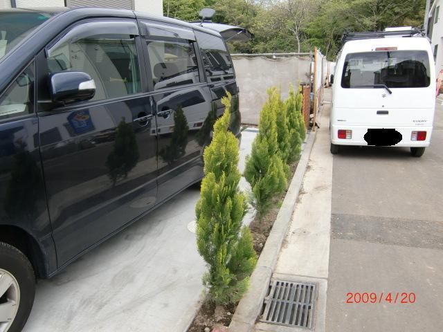 0420駐車場植栽