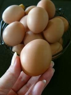 egg03.jpg