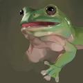 カエル模写