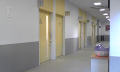 猫の大学病院2