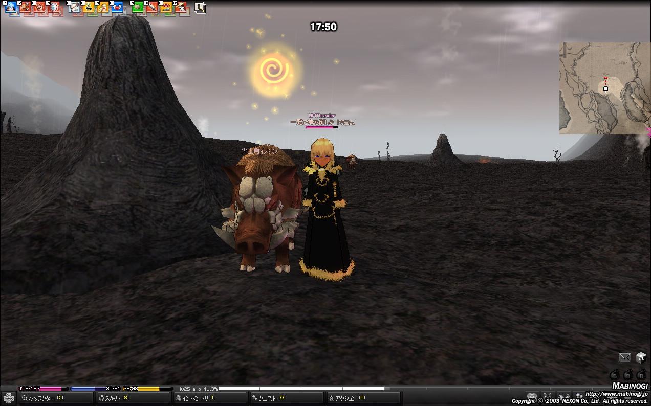 mabinogi_2010_05_28_019.jpg