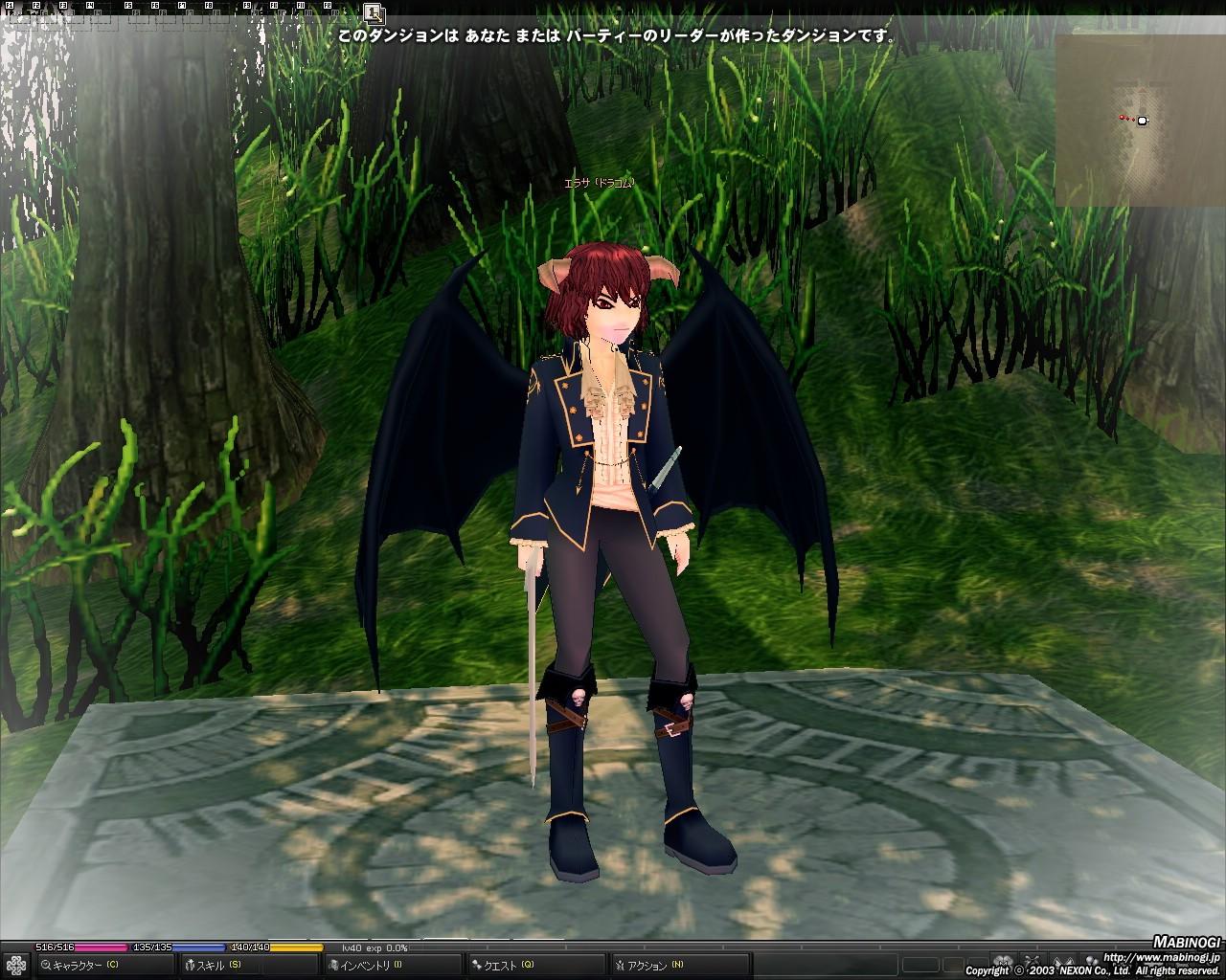 mabinogi_2010_07_05_001.jpg