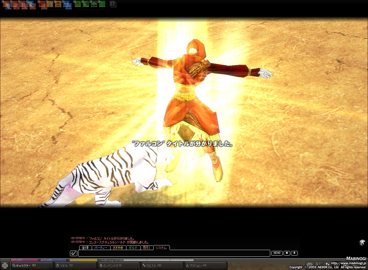 mabinogi_2010_07_27_004.jpg