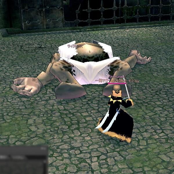 mabinogi_2010_08_21_017.jpg